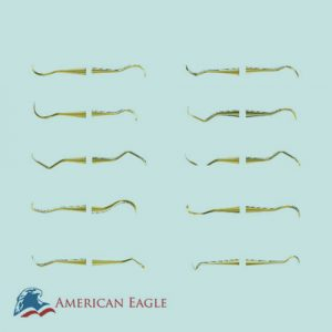 American Eagle XP Scaler