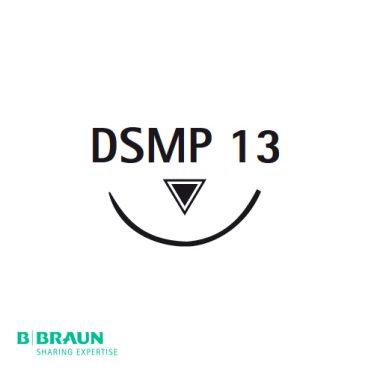 DSMP13